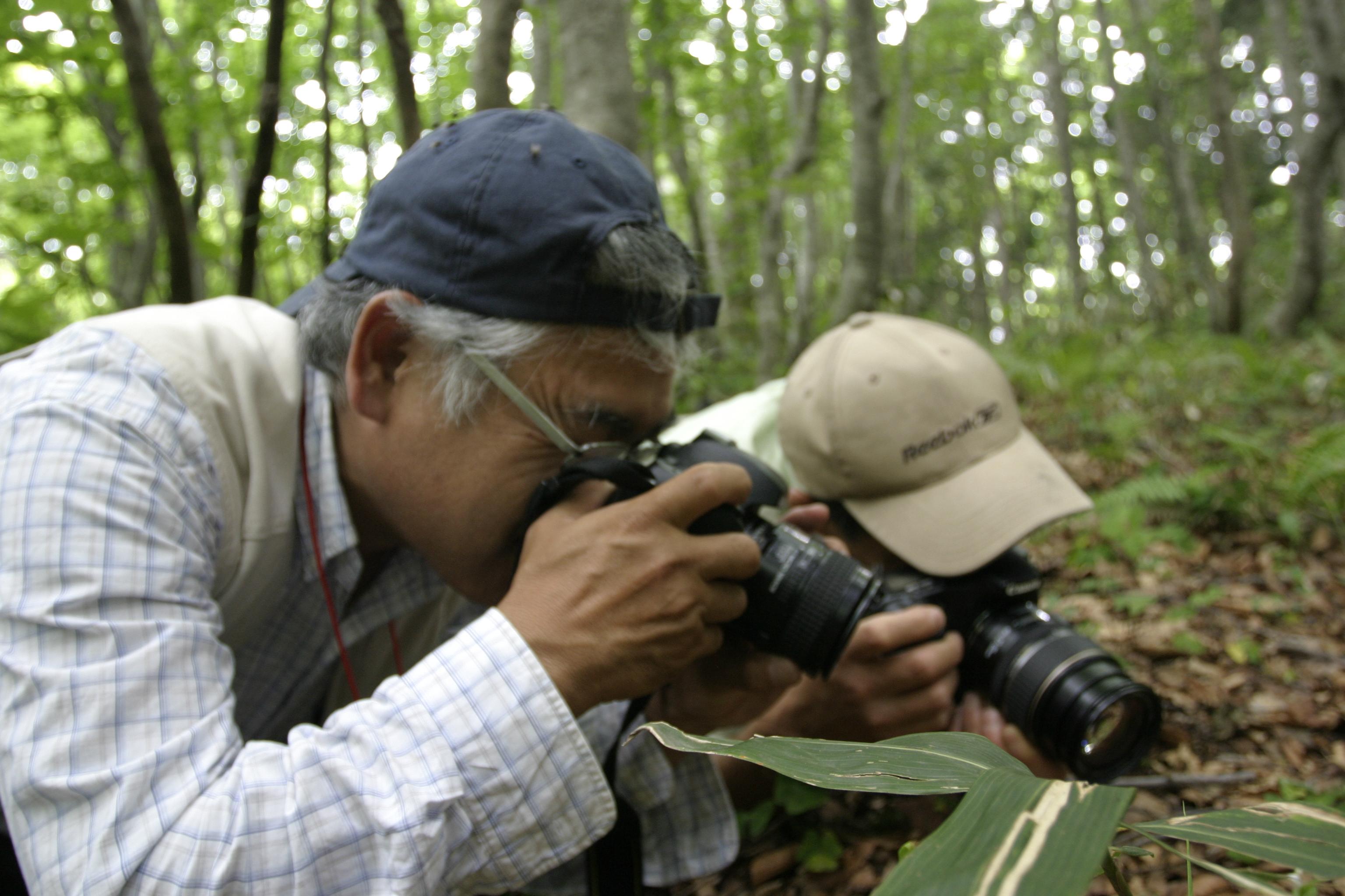 北広島町自然学術調査報告会の実施