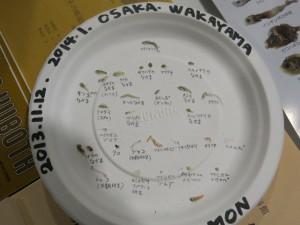 きしわだ自然資料館のブースでは,ちりモン体験ができました.