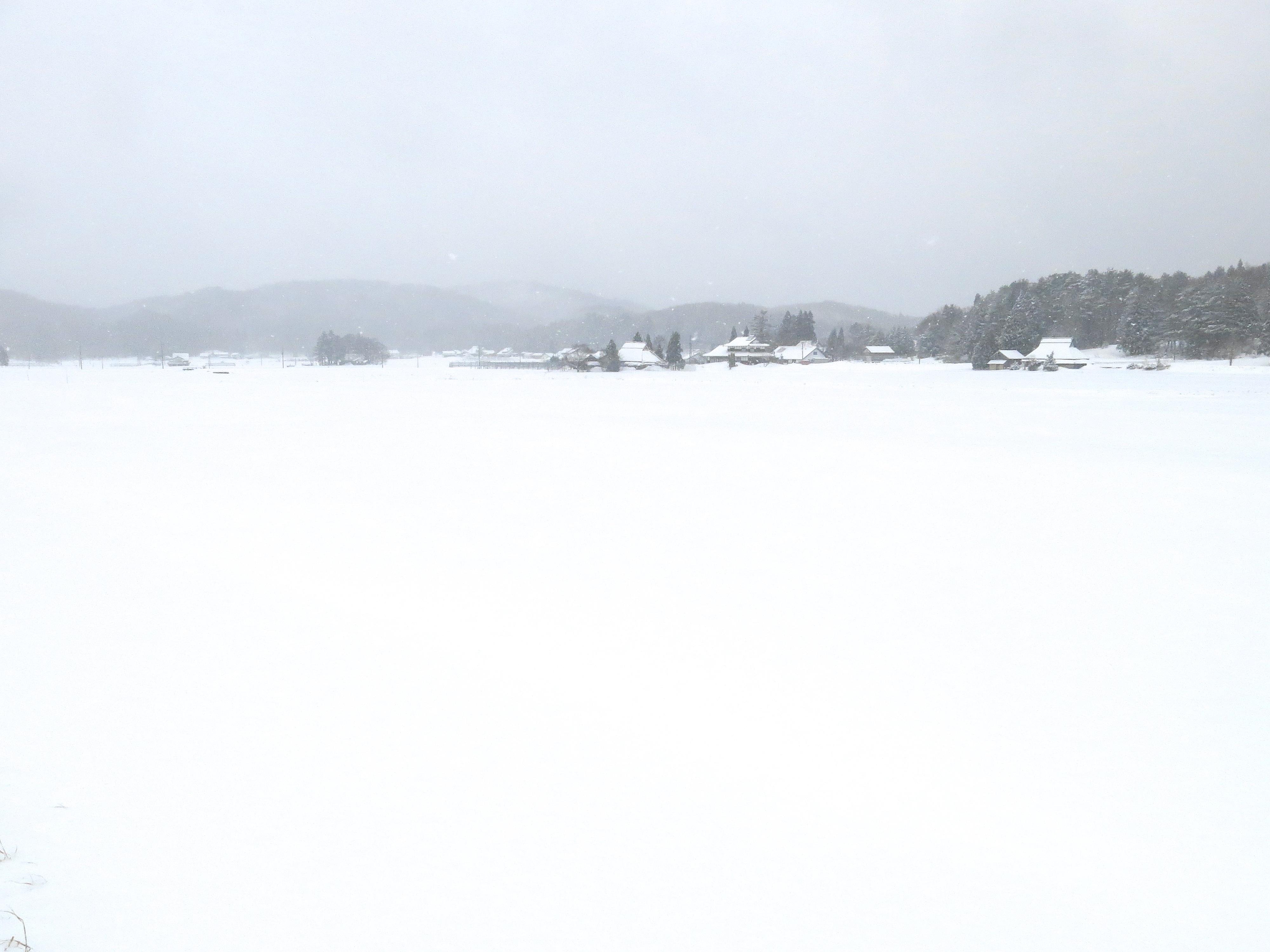 啓蟄の朝,春の雪が降る