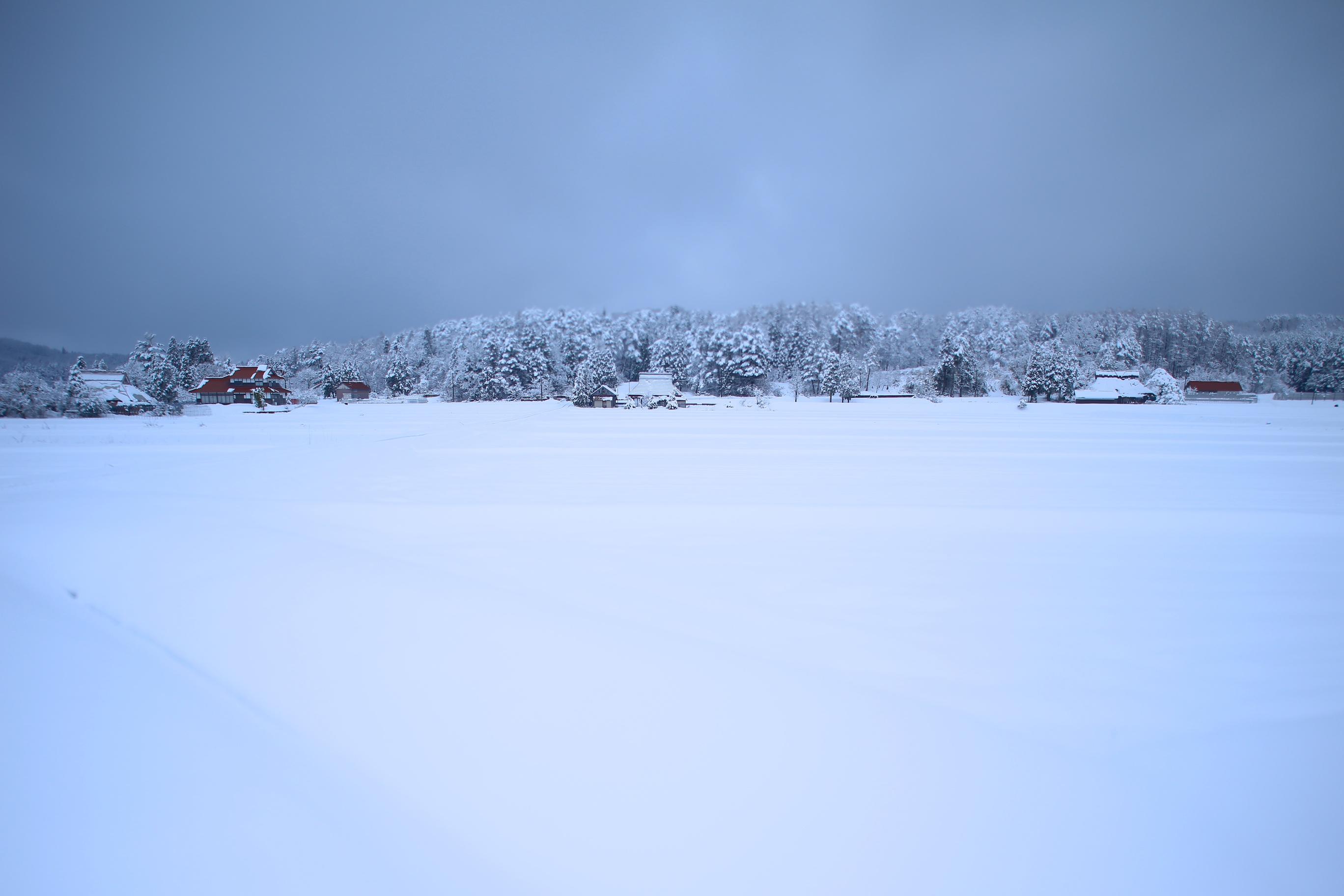 なごりの雪