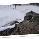 棚田の雪解け