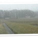 山焼き前日,雨の朝